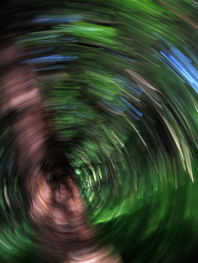 Vertigo in the Impressionist Woods